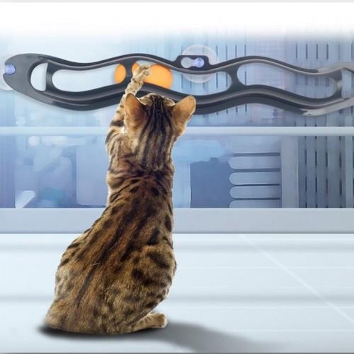 Jouet pour chat - Piste de jeu Track n'Ball pour chats