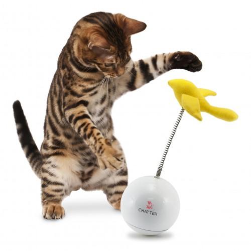 Jouet pour chat - Jeu casse-tête Chatter pour chats