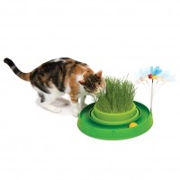 Aire de jeu pour chat - Circuit Bee Play & Garden Cat It