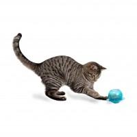 Jouet distributeur pour chat - Distributeur Fishbowl Funkitty