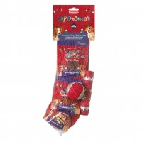 Friandises et jouets pour chien - Christmas Dinner Dog Rosewood
