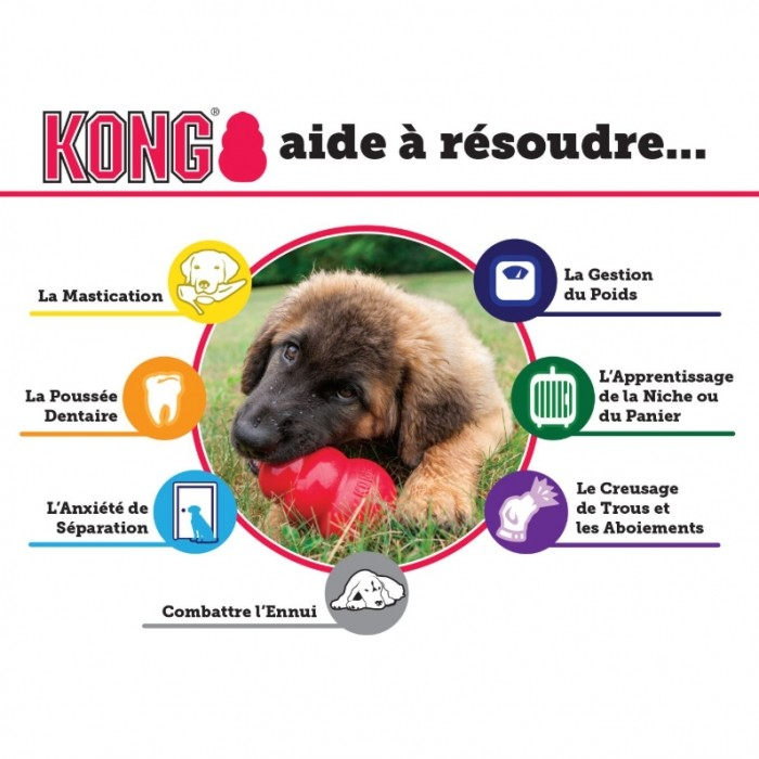Jouet pour chien - Jouet Classic KONG - Jouet à mâcher pour chien pour chiens