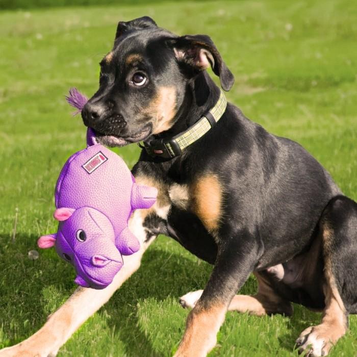 Jouet pour chien - Jouet Peluche Phatz pour chiens