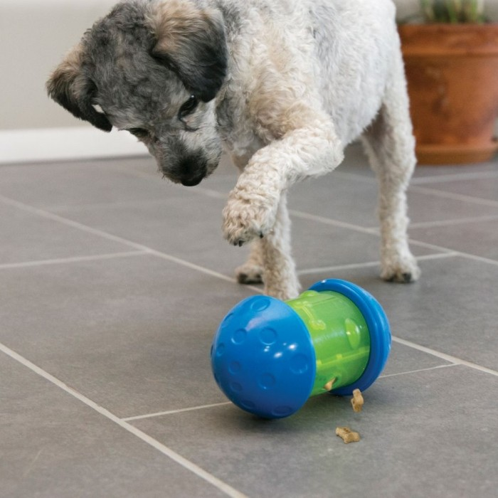 Jouet pour chien - Jouet distributeur Spin It KONG pour chiens