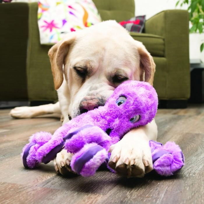Jouet pour chien - Peluche SoftSeas KONG pour chiens