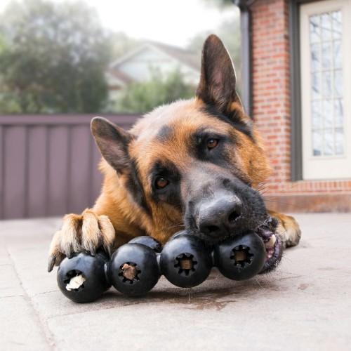 Jouet pour chien - Jouet à mâcher Goodie Ribbon Extreme pour chiens