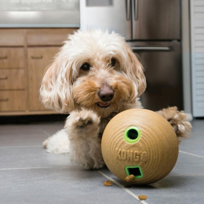 Jouet pour chien - Jouet distributeur Bamboo Feeder pour chiens
