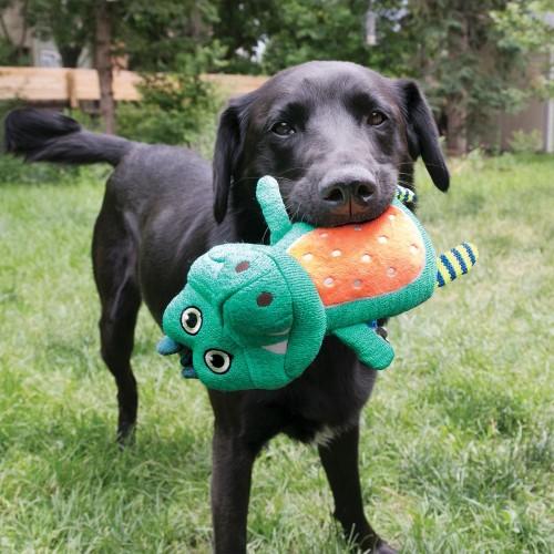 Jouet pour chien - Peluche Whoopz KONG pour chiens