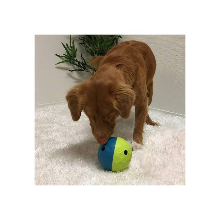 Jouet pour chien - Jouet distributeur Treat Tumble pour chiens