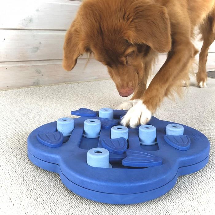 Jouet pour chien - Dog Hide N'Side Composite pour chiens