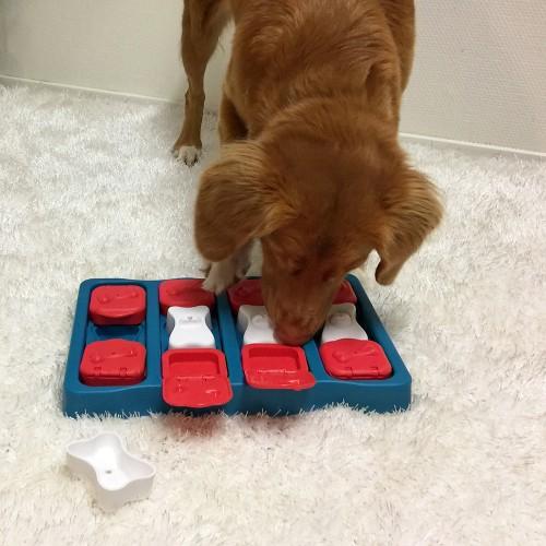 Jouet pour chien - Jouet distributeur Brick pour chiens