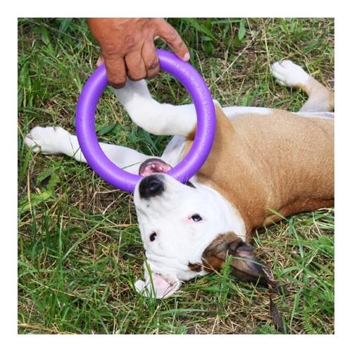 Jouet pour chien - Anneau mini Puller pour chiens