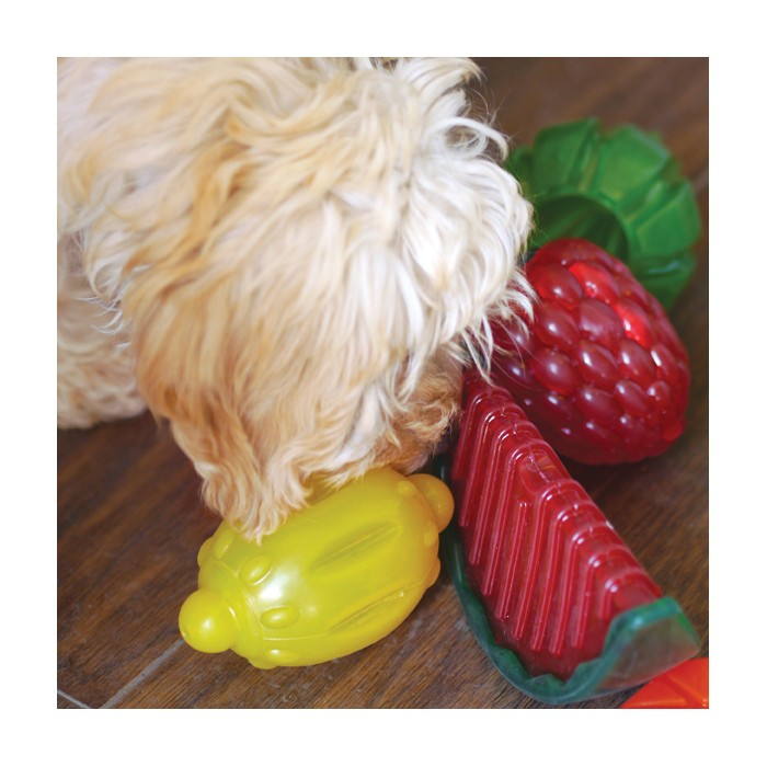 Jouet pour chien - Jouets Fruits antibactériens pour chiens