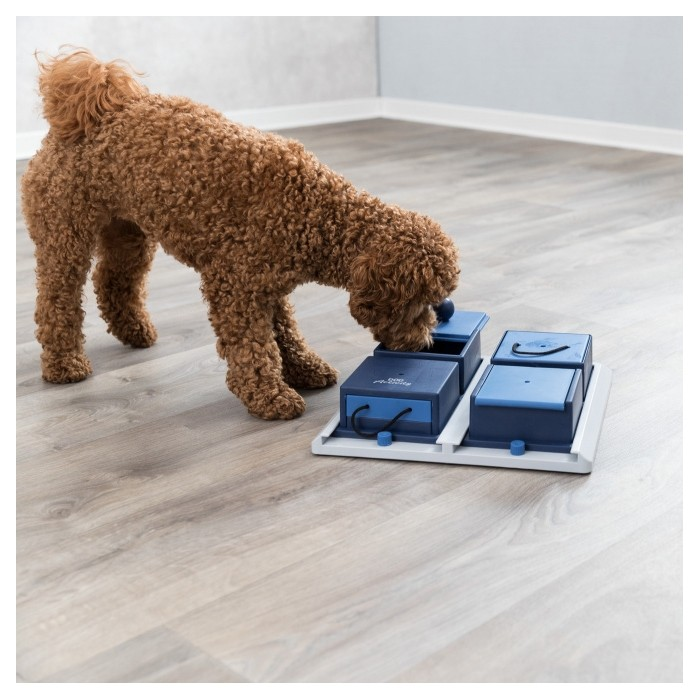 Jouet pour chien - Jouet éducatif Poker Box pour chiens