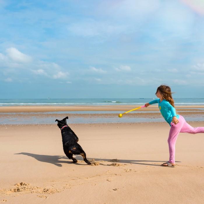 Jouet pour chien - Lance balle Sunset pour chiens