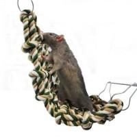 Jouet pour rat et furet - Filet Cargo Rosewood