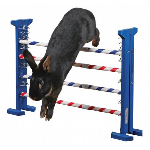Jouet pour rongeur - Obstacle combiné Agility pour rongeurs