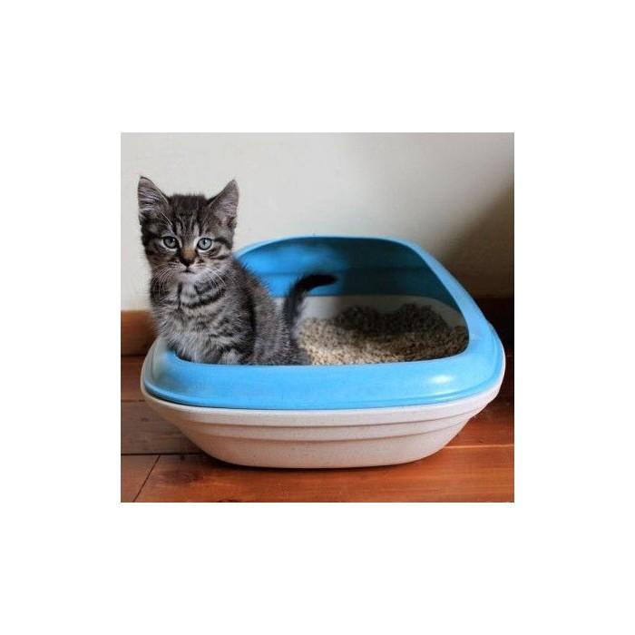 Litière chat, maison de toilette - Bac à litière en bambou  pour chats