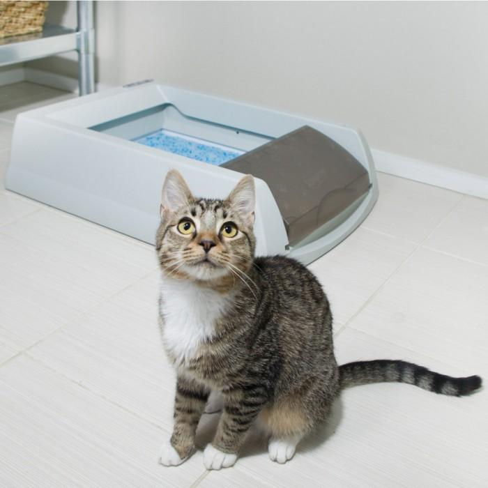 Litière chat, maison de toilette - Litière auto-nettoyante ScoopFree pour chats