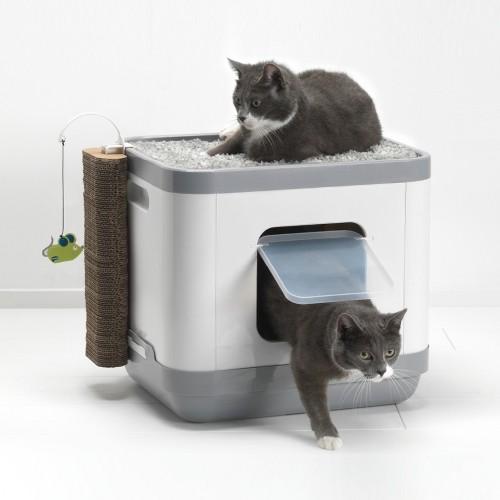 Litière chat, maison de toilette - Maison de toilette Cube 2 en 1 pour chats