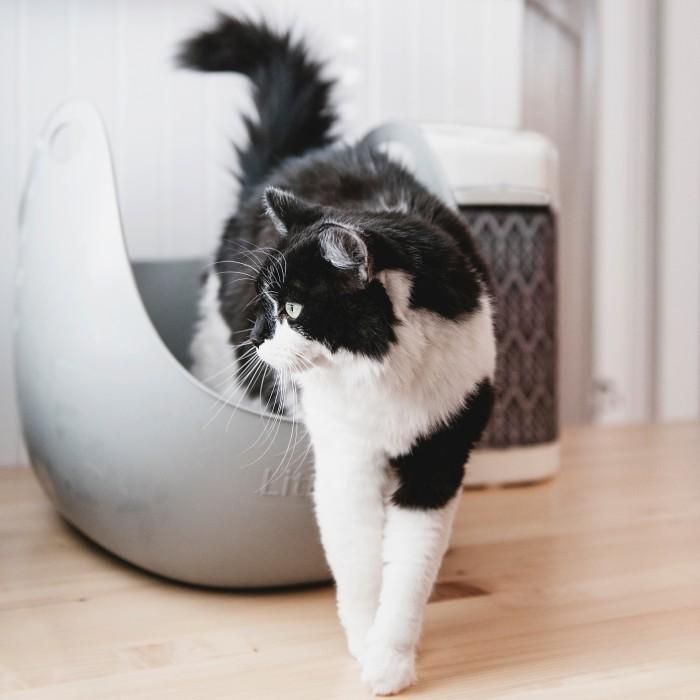 Litière & compagnie - Bac à litière LitterBox avec pelle pour chats