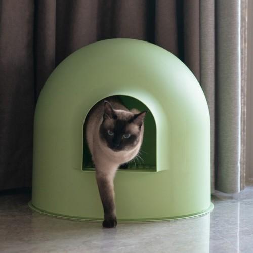 Litière & compagnie - L'Igloo pour chats