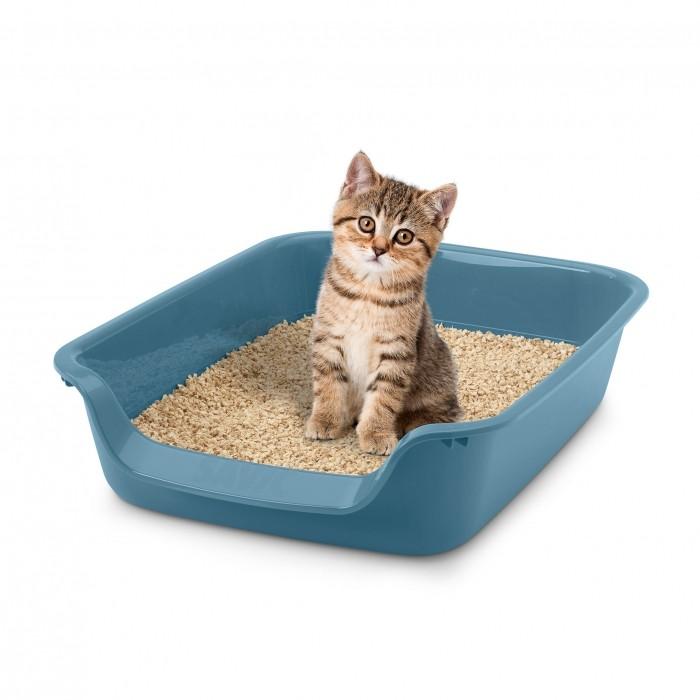 Litière & compagnie - Bac à litière Junior Toilet pour chats
