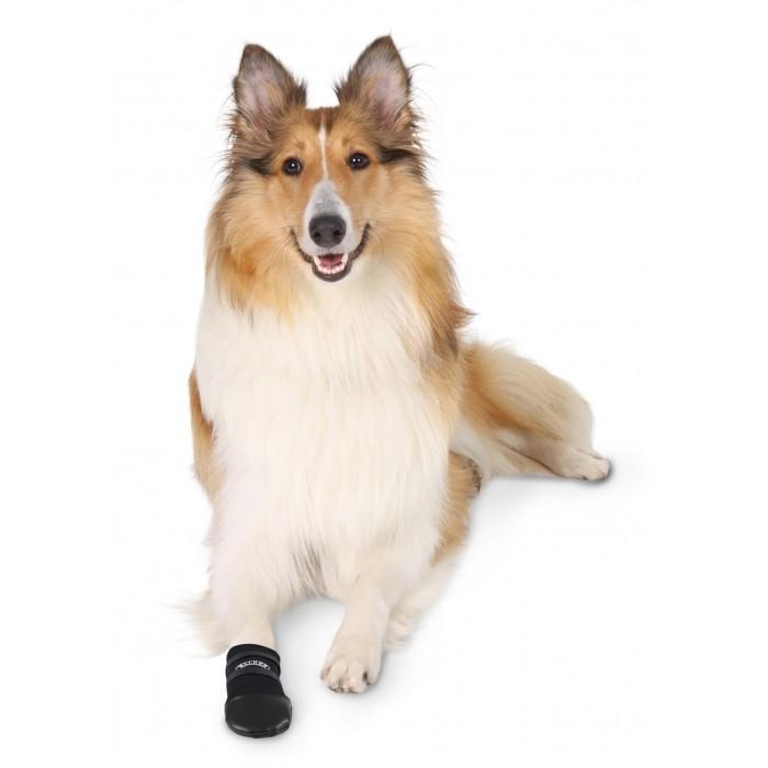 Sécurité et protection - Chaussons Walker pour chiens