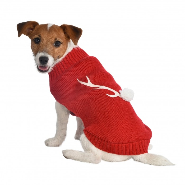 Manteau & compagnie - Pull Ralph pour chiens