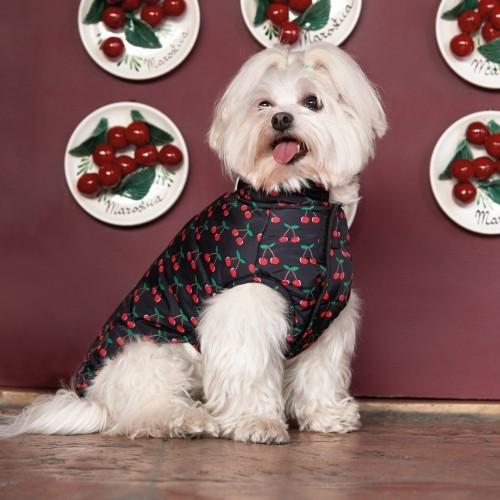 Manteau & compagnie - Coupe-vent Ibiza pour chiens