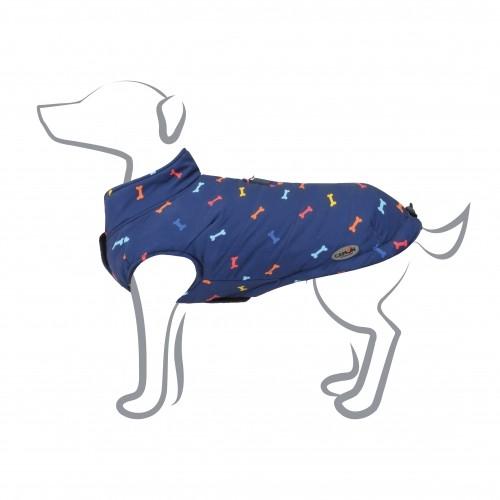 dressage chien camon