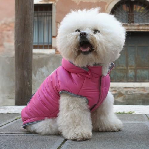 Manteau & compagnie - Manteau pour chien Fiona pour chiens