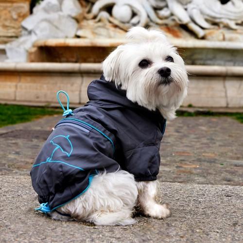 Manteau & compagnie - Imperméable pour chien Gloria pour chiens