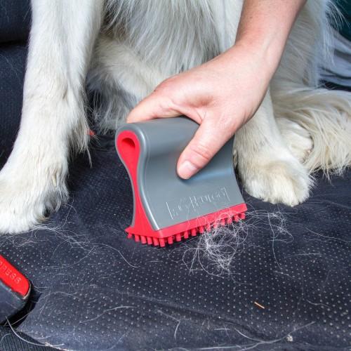 Accessoires chien - Brosse anti-poils Shed Sweeper pour chiens