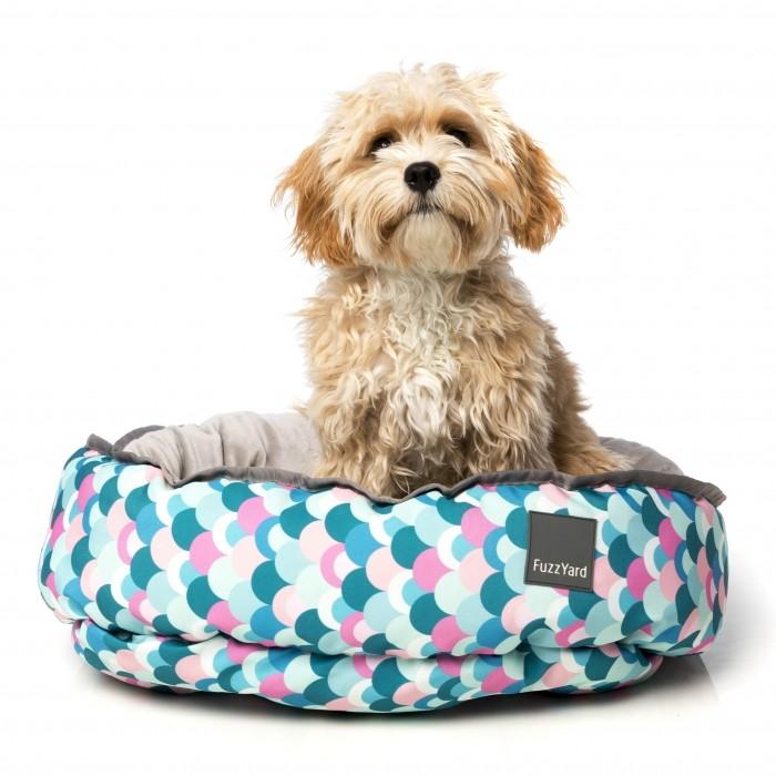 Panier et coussin pour chien - Corbeille Splash pour chiens
