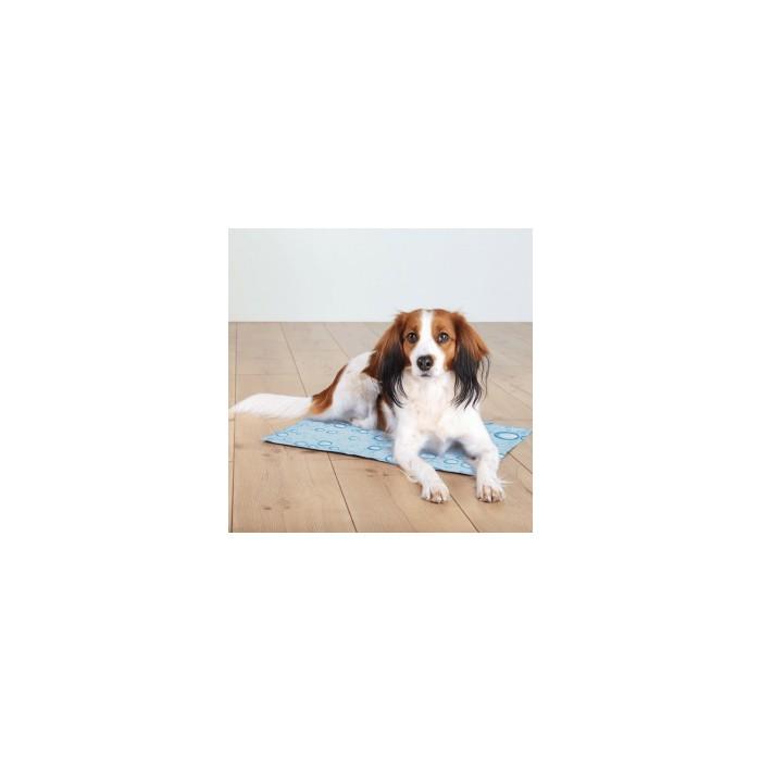 Panier et coussin pour chien - Tapis rafraîchissant Bulles pour chiens
