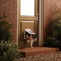Chatière manuelle pour chat et petit chien - Chatière Staywell Original à 2 positions Petsafe