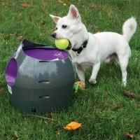 Lance balle pour chien - Lanceur de balles automatique Petsafe