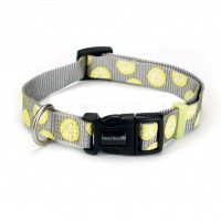 Collier pour chien - Collier nylon Lemon Beeztees