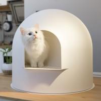 Maison de toilette pour chat - L'Igloo Pidan Studio