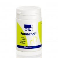 Complément fonction hépatique pour chien et chat - Fumachol MP Labo