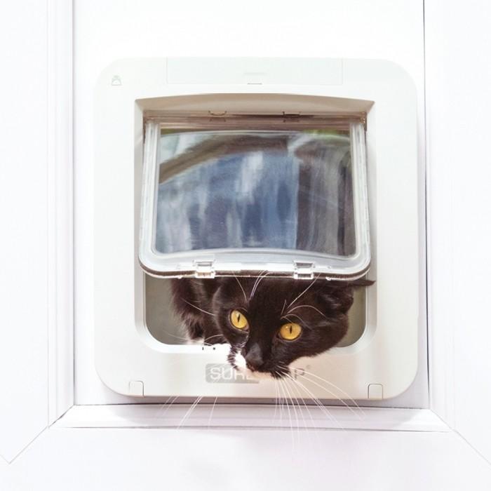 Chatière, sécurité, anti-fugue - Petite chatière électronique Connect pour chats