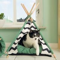 Maison pour chat - Tipi Bengy Beeztees