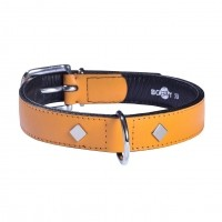 Collier pour chien - Collier Tomy - Moutarde Bobby