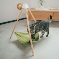 Hamac pour chat - Hamac triangulaire Pidan Studio