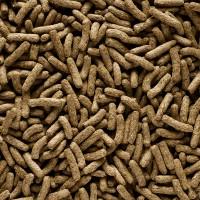 Granulés pour lapin - Complete - Cuni Adult Versele Laga