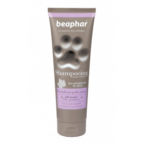Shampooing pour chien - Shampooing Revitalisant poils courts Beaphar
