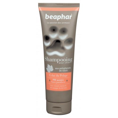 Shampooing et toilettage - Shampooing Eclat du pelage  pour chiens