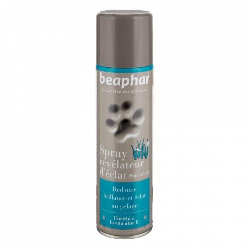 Shampooing et toilettage - Spray révélateur d'éclat pour chiens