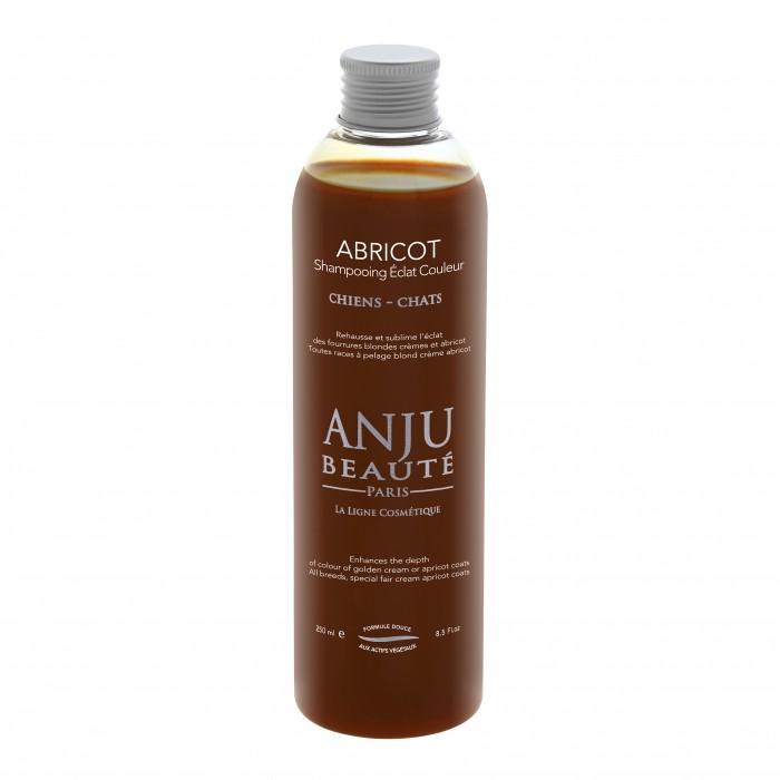 Shampooing éclat couleur Abricot